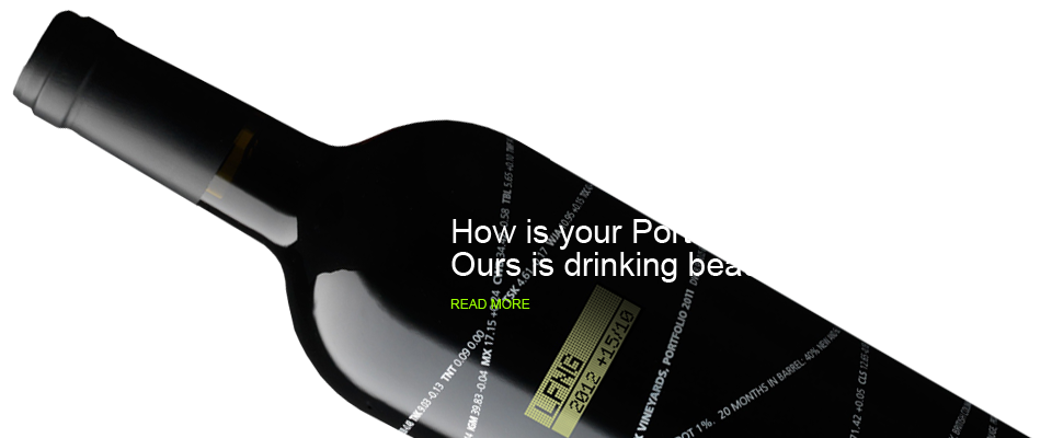 How is your Portfolio performing?